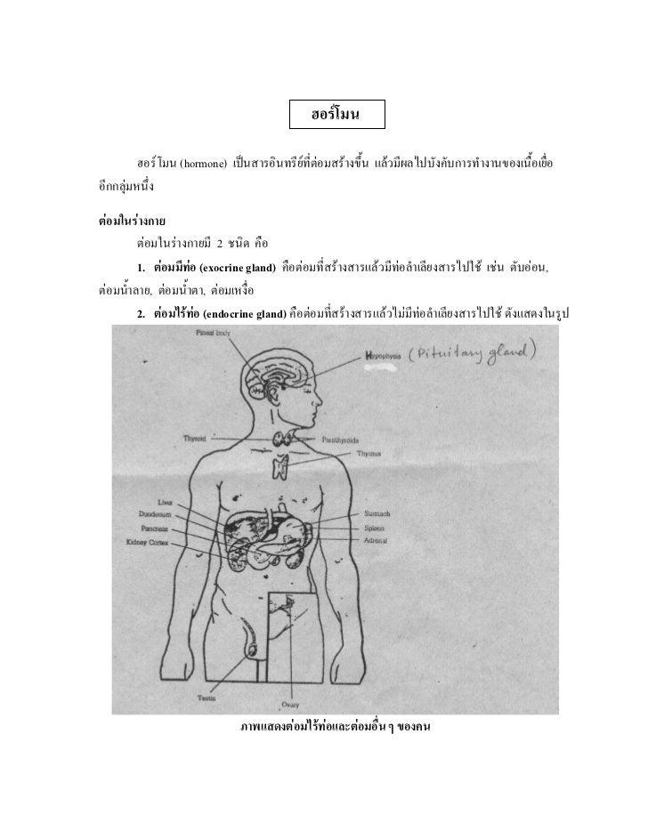 ฮอรโมน         ฮอรโมน (hormone) เปนสารอินทรียที่ตอมสรางขึ้น แลวมีผลไปบังคับการทํางานของเนื้อเยื่ออีกกลุมหนึ่งตอมใ...