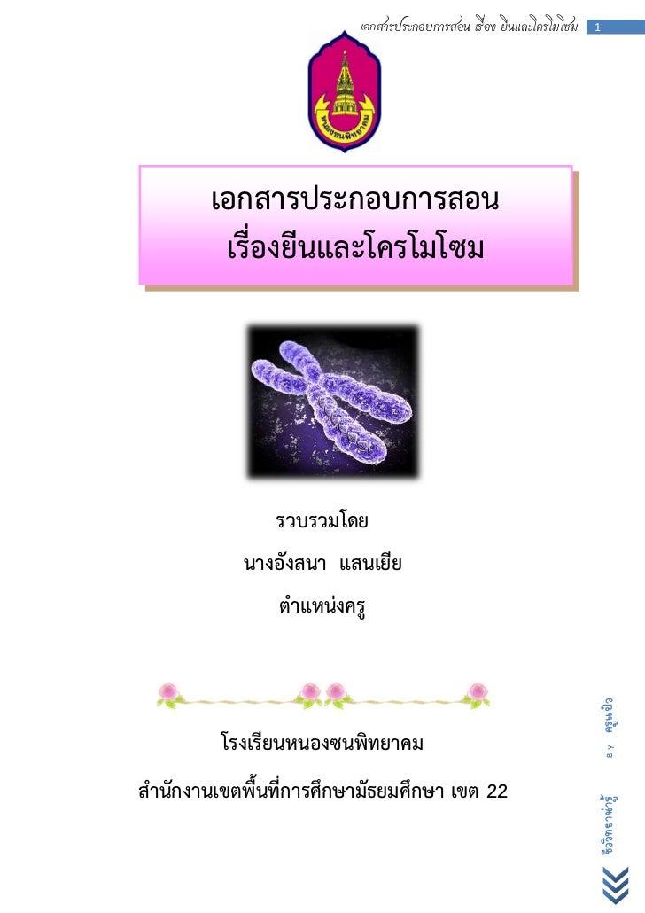 เอกสาร เรื่อง ยีนและโครโมโซม