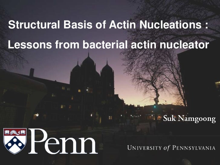 Structural Basis of Actin Nucleations :Lessons from bacterial actin nucleator