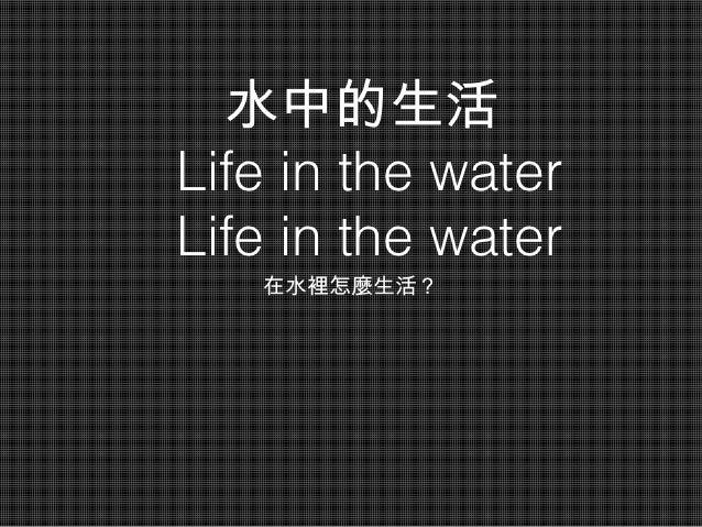 水中的生活Life in the waterLife in the water   在水裡怎麼生活?