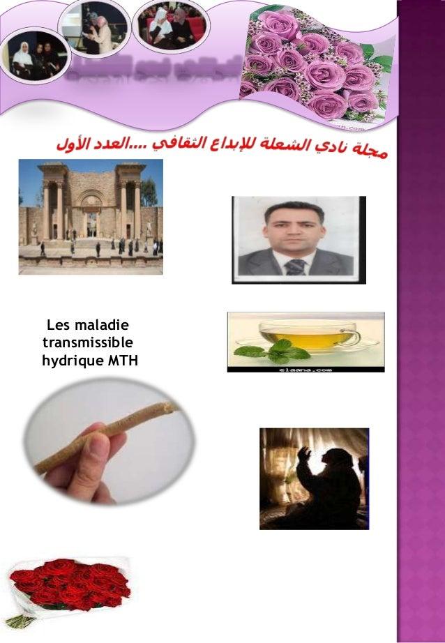 Les maladietransmissiblehydrique MTH