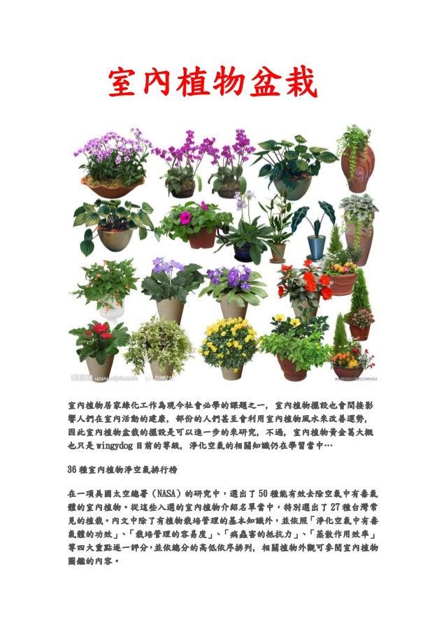 室內植物盆栽室內植物居家綠化工作為現今社會必學的課題之一, 室內植物擺設也會間接影響人們在室內活動的建康, 部份的人們甚至會利用室內植物風水來改善運勢,因此室內植物盆栽的擺設是可以進一步的來研究, 不過, 室內植物黃金葛大概也只是 wingyd...