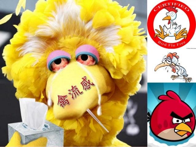 禽流感防治