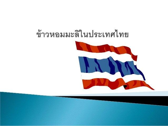  อาชีพหลักของคนไทย ส่วนมากเป็นอาชีพเกษตรกรรม เนื่องจากมีพื้นที่เหมาะสมในการทําเกษตรกรรม ทําไร่ และ ฟาร์มปศุสัตว์มาก อีกอ...