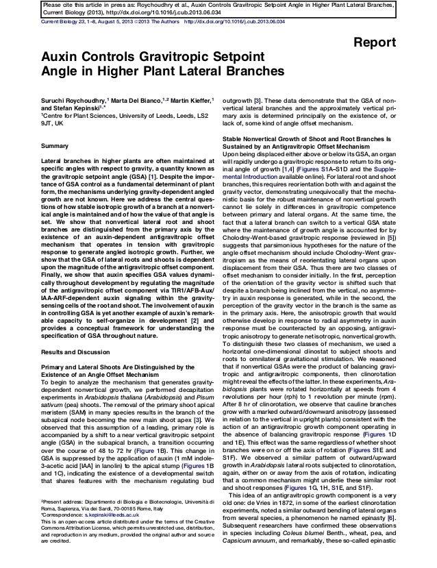 Current Biology 23, 1–8, August 5, 2013 ª2013 The Authors http://dx.doi.org/10.1016/j.cub.2013.06.034 Report Auxin Control...