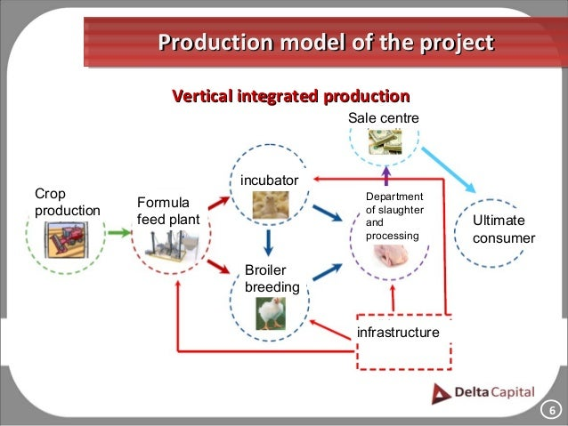 The Project Of The Integrated Poultry Farm Of Breeding The