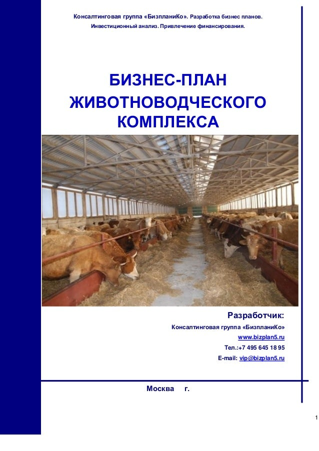 Бизнес план выращивание крупнорогатого скота 46
