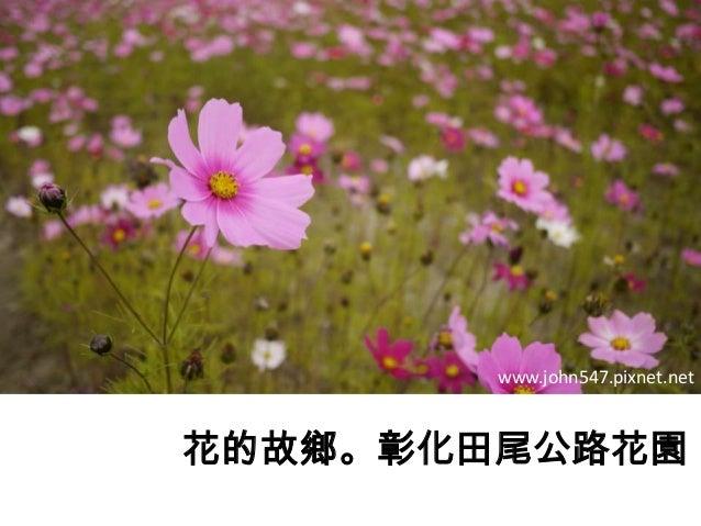 彰化田尾公路花園。花的故鄉