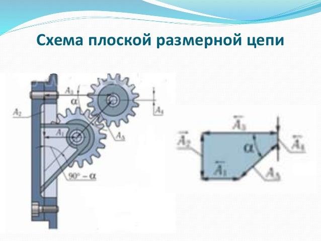 размерной цепи; 6. Схема