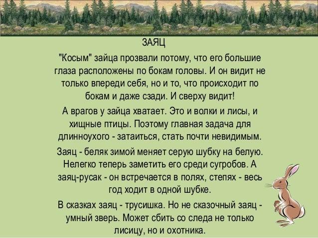 Яценюк назвал главные задачи, с которыми справился нынешний Кабмин - Цензор.НЕТ 2429