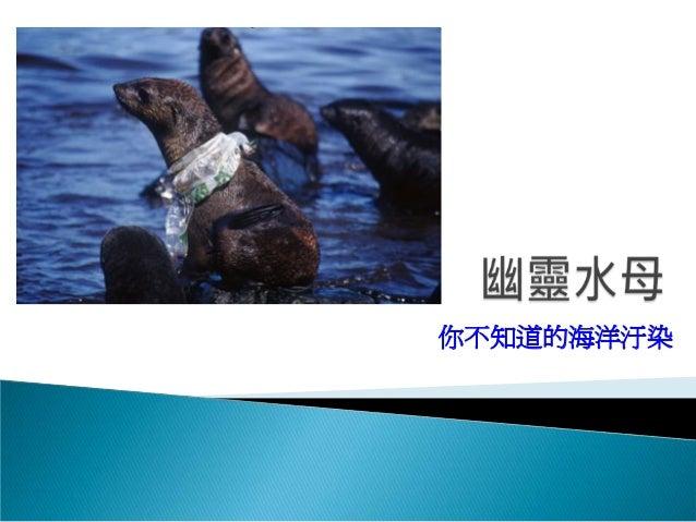 你不知道的海洋汙染
