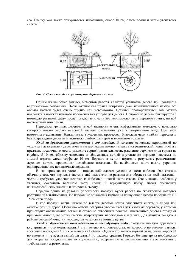 Схема посадки крупномерных