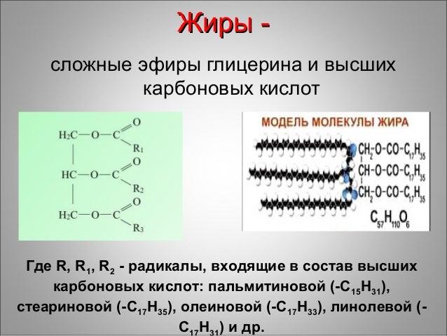 сложные эфиры глицерина и