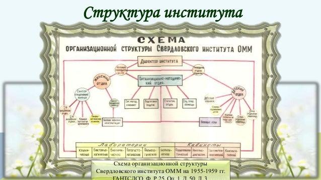 Структура института Схема