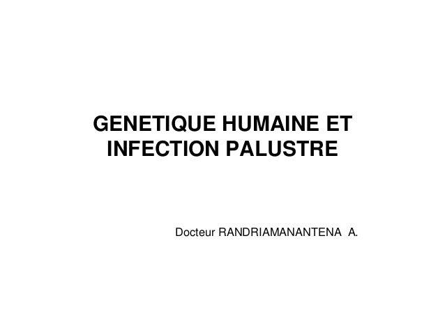 GENETIQUE HUMAINE ET INFECTION PALUSTRE      Docteur RANDRIAMANANTENA A.