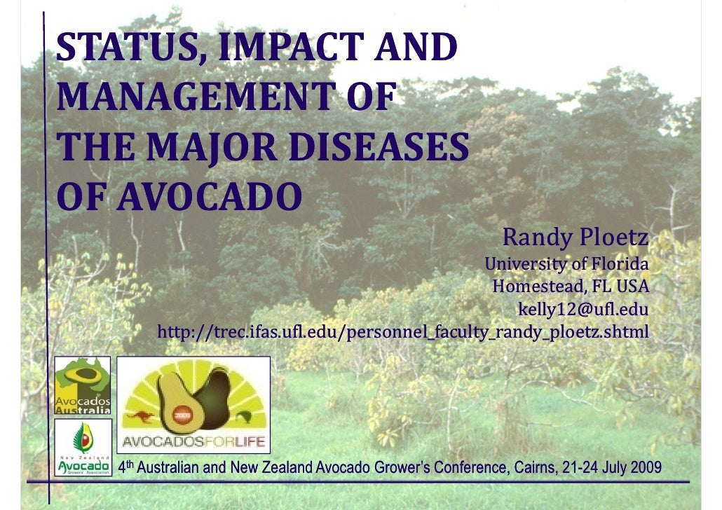 STATUS, IMPACT AND MANAGEMENT OF THE MAJOR DISEASES OF AVOCADO                                                            ...