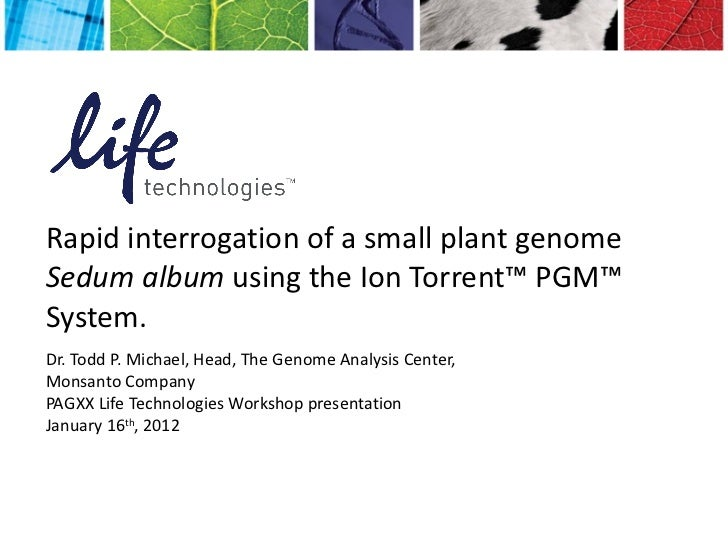 Rapid interrogation of a small plant genome Sedum album using the Ion Torrent™ PGM™ System.