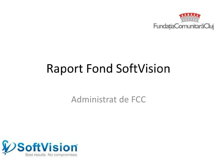 Raport softvision