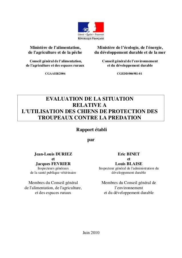 Rapport 2006 _chiens_de_protection