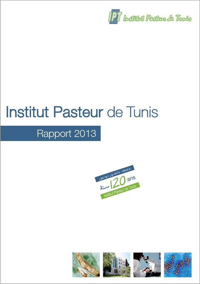 Rapport 2013