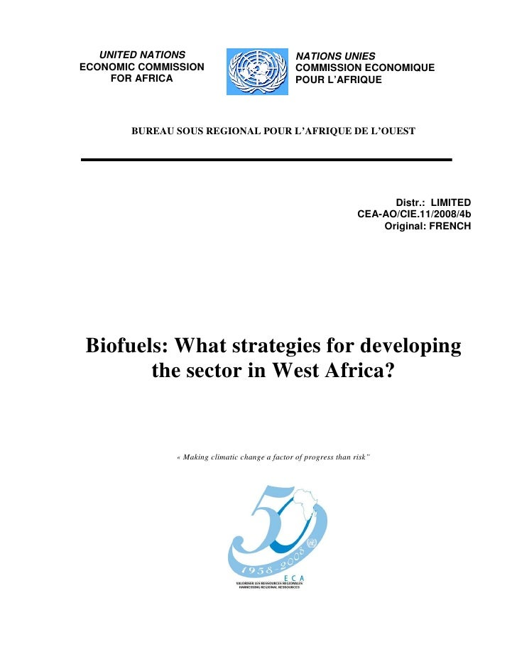 Biofuels: What Strategies For Developing The Sector in West Africa