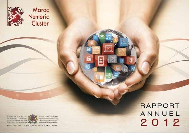 Rapport mnc 2012 web