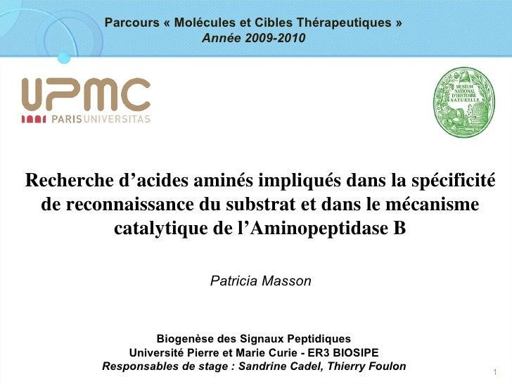 Biogenèse des Signaux Peptidiques Université Pierre et Marie Curie - ER3 BIOSIPE Responsables de stage: Sandrine Cadel, T...