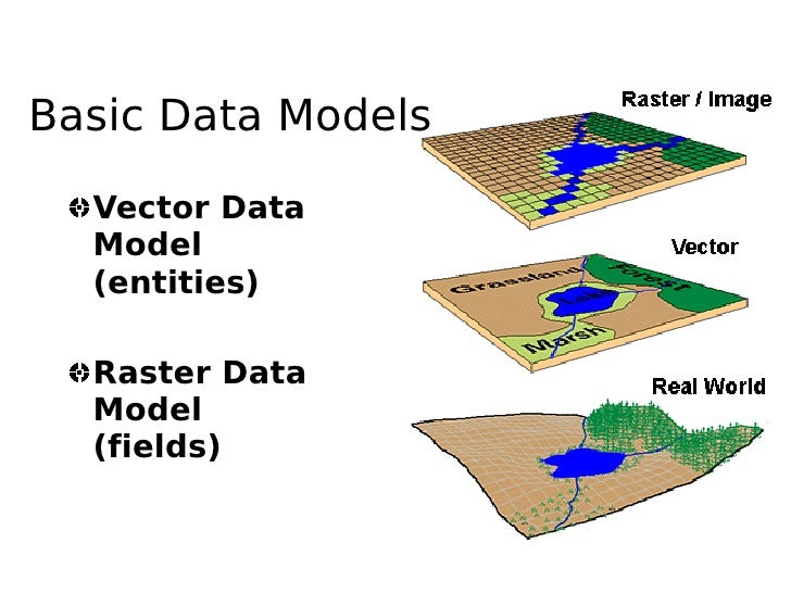 Basic Data Models    Vector Data   Model   (entities)    Raster Data   Model   (fields)