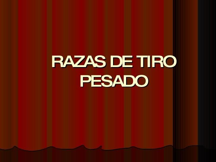RAZAS DE TIRO PESADO