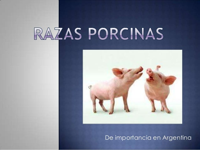 De importancia en Argentina