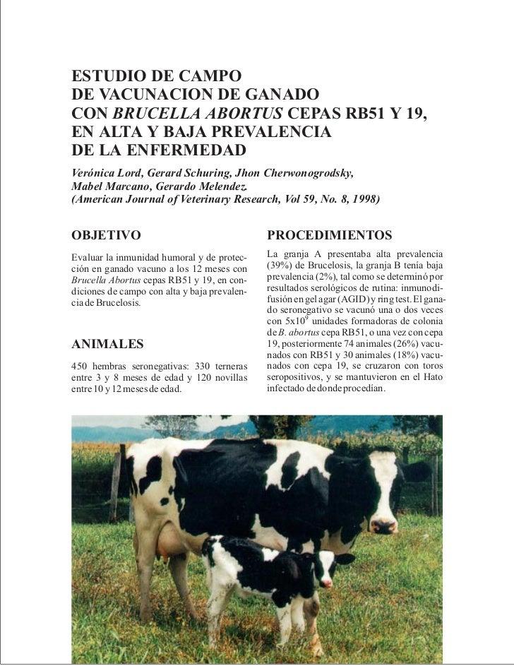 ESTUDIO DE CAMPODE VACUNACION DE GANADOCON BRUCELLA ABORTUS CEPAS RB51 Y 19,EN ALTA Y BAJA PREVALENCIADE LA ENFERMEDADVeró...