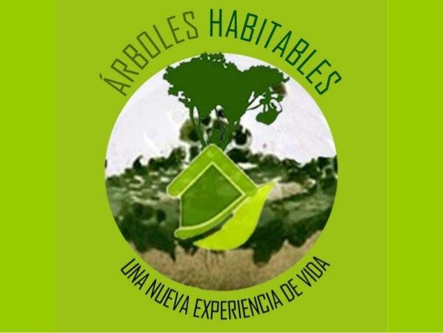 Árboles habitables