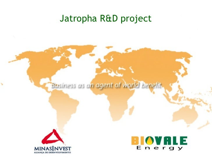 Jatropha R&D project