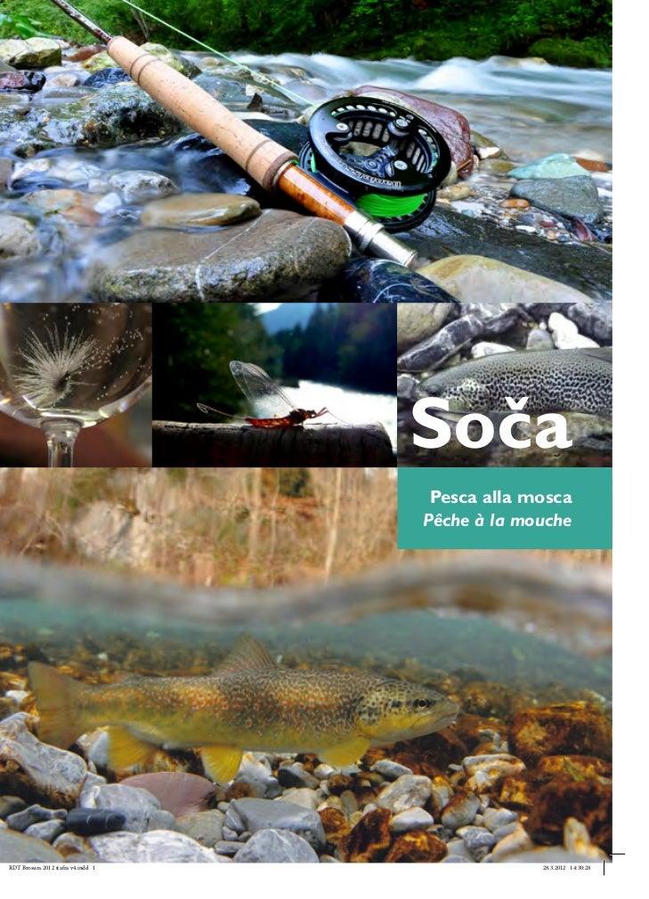 Soča                                     Pesca alla mosca                                    Pêche à la moucheRDT Brosura ...