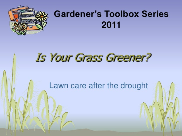 Gardener's Toolbox Series <br />2011<br />Is Your Grass Greener?<br />Lawn care after the drought<br />