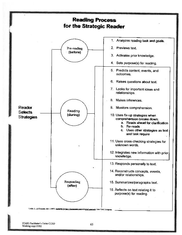 Reading process for the strategic reader