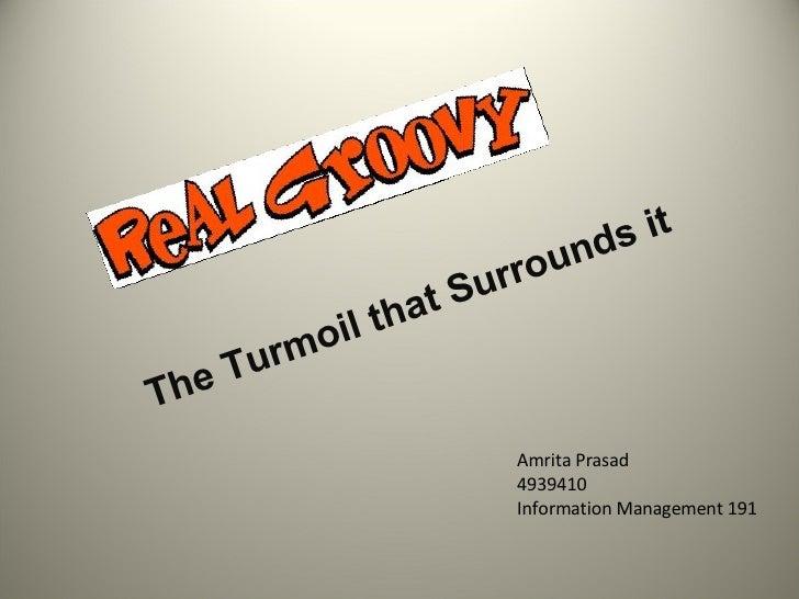 The Turmoil that Surrounds it Amrita Prasad 4939410 Information Management 191