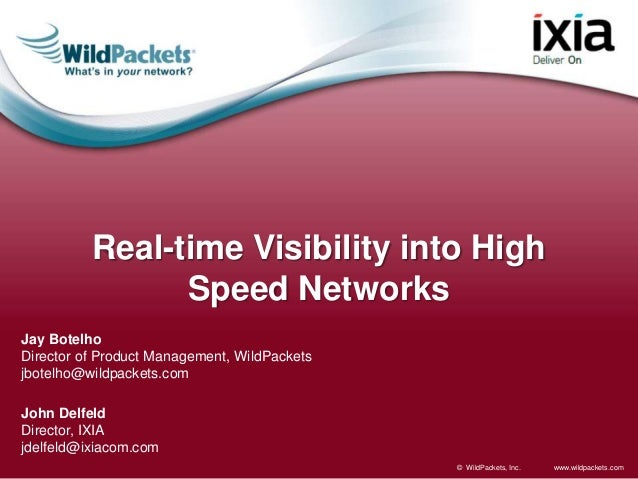 Real-Time Visibility into High Speed Networks