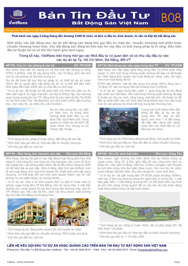 RealInvest_Newsletter_B_No_08_Thang12_Nam08