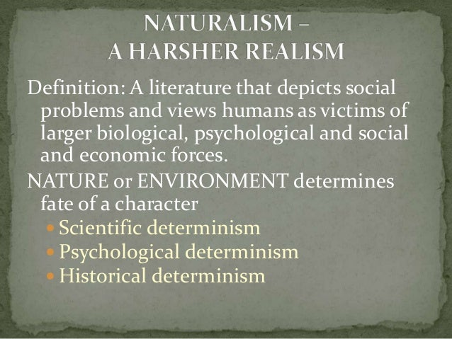 essay realism naturalism