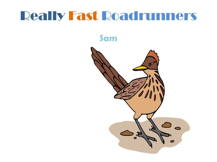 Really fast roadrunners