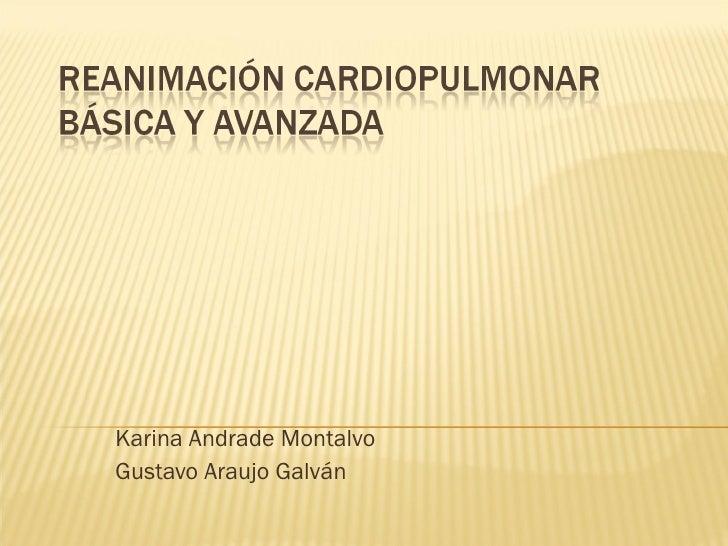 Karina Andrade Montalvo Gustavo Araujo Galván