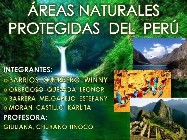 Las áreas protegidas sonterritorios   de   manejoespecial destinados a laadministración, manejo yprotección del ambiente y...