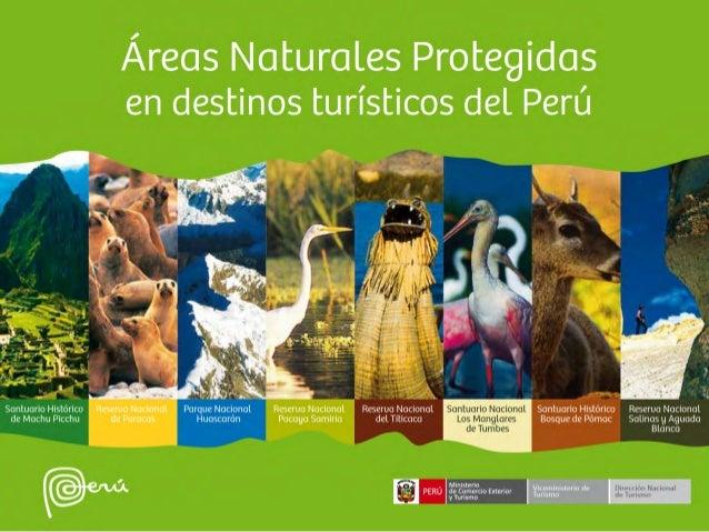 Introducción El turismo, considerado como una actividad dinamizadora de la economía en el Perú, ofrece a los turistas pais...
