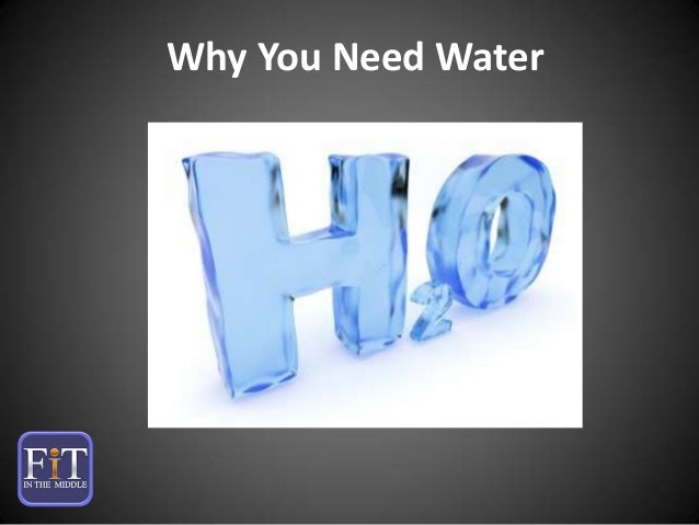 Why You Need Water