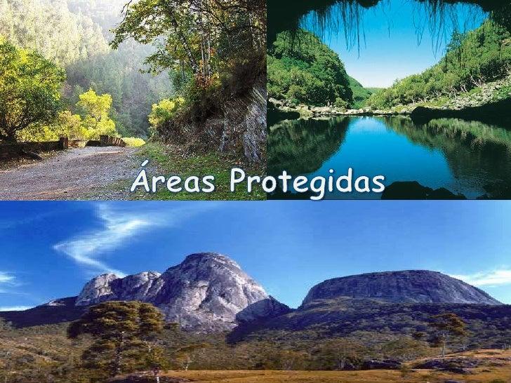 Áreas Protegidas<br />