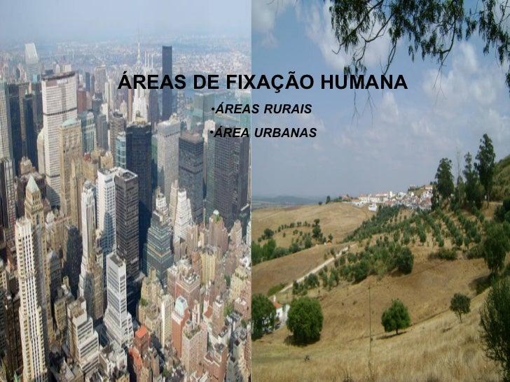 <ul><li>ÁREAS DE FIXAÇÃO HUMANA </li></ul><ul><li>ÁREAS RURAIS  </li></ul><ul><li>ÁREA URBANAS </li></ul>