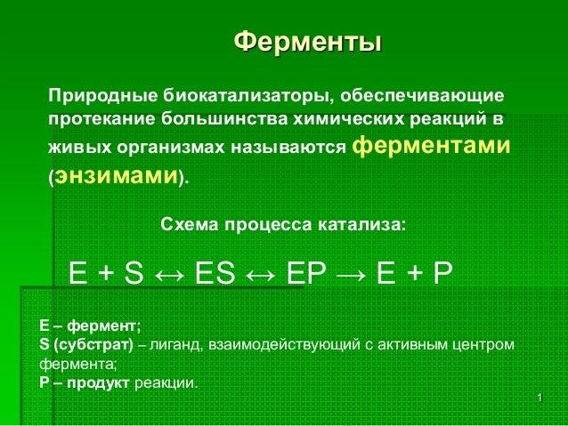 1 Ферменты Е + S ↔ ES ↔ EP → E + P Природные биокатализаторы, обеспечивающие протекание большинства химических реакций в ж...