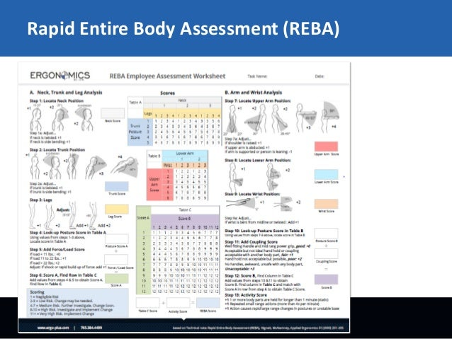 Free Worksheets movement of the body worksheet : REBA - Rapid Entire Body Assessment
