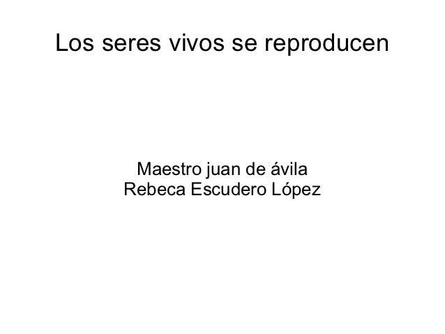 Los seres vivos se reproducen      Maestro juan de ávila     Rebeca Escudero López
